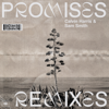 Calvin Harris, Sam Smith - Promises (Sonny Fodera Extended Remix) artwork