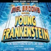 Young Frankenstein The New Mel Brooks Musical