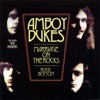 Marriage On the Rocks / Rock Bottom (feat. Ted Nugent), The Amboy Dukes