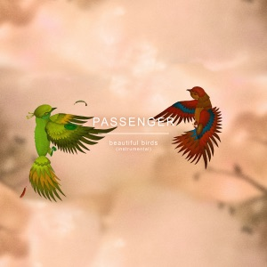 Beautiful Birds (Instrumental) - Single Mp3 Download