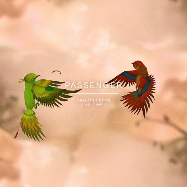 Beautiful Birds (Instrumental) - Single