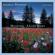 High Plains Lullaby - George Winston