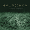 Hauschka - A Different Forest  artwork