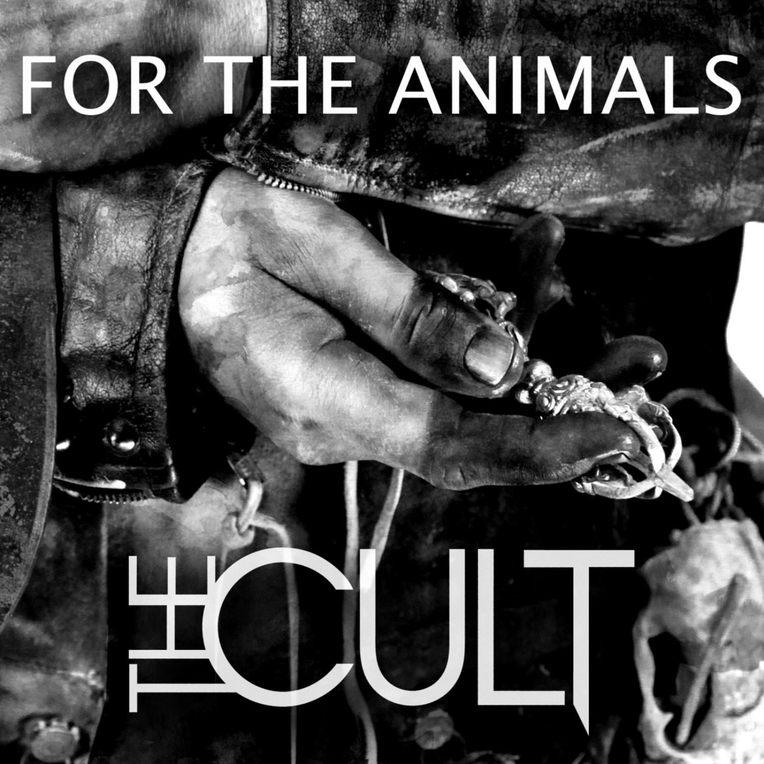 For the Animals - Single