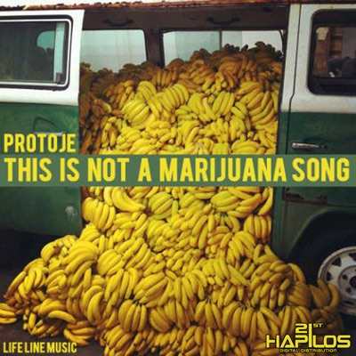 This Is Not a Marijuna Song - Single - Protoje