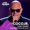 Coco JR - Soms Vraagt Een Mens Zich Af (Uit Liefde Voor Muziek) artwork