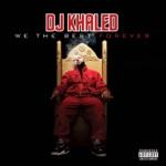 songs like Welcome to My Hood (Remix) [feat. Ludacris, Busta Rhymes, Twista, T-Pain, Mavado, Birdman, Ace Hood, Fat Joe, Jadakiss, Bun B, The Game & Waka Flocka Flame]