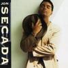 Jon Secada - Just Another Day artwork