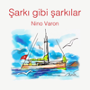 Sezen Aksu - İmkansızım artwork