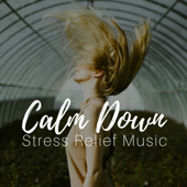 Calm Down - Stress Relief Music to Reduce Anxiety, Healing Meditation Zone, Serenity Relaxation