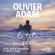 Olivier Adam - La tête sous l'eau