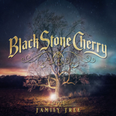 Southern Fried Friday Night - Black Stone Cherry