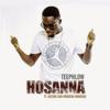 Teephlow - Hosanna (feat. Kwabena Kwabena & Nature) artwork
