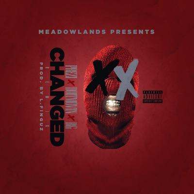 Changed Remix (feat. RG) - Single - Doitmovin & Prezi Mp3 Download ...