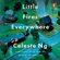 Celeste Ng - Little Fires Everywhere (Unabridged)
