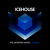 ICEHOUSE - The Extended Mixes Vol. 1 kunstwerk