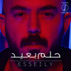 Mahmoud El Esseily - Helm Baeid artwork