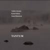 Tantum - Jonas Simonson, Anders Jormin & Karin Nelson