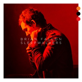 Image result for brian fallon sleepwalkers