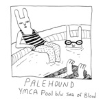Palehound - Sea of Blood