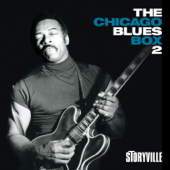The Chicago Blues Box 2, Vol. 2 (feat. Tyrone Centuray, Ernest Gatewood & Jimmy Miller)-Hip Lankchan