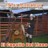 El Capullo Del Llano - Flor Sanchez