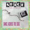 Spice & Company - Share My Love artwork