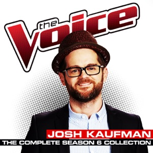 Josh Kaufman & Usher - Every Breath You Take
