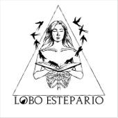 Lobo Estepario - Puerta III: Ceiba