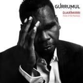 Gurrumul - Djarimirri (Child of the Rainbow)
