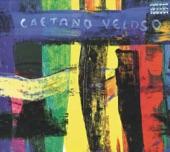 Caetano Veloso - Manhatã (Para Lulu Santos)