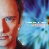 David Hallyday - L'ideal
