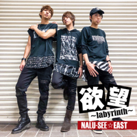 NALU-SEE☆ - 欲望~labyrinth~<EAST> artwork