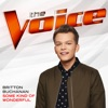 Some Kind of Wonderful The Voice Performance Single