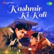 Kashmir Ki Kali Original Motion Picture Soundtrack