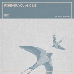 The Teskey Brothers - Forever You and Me
