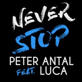 Peter Antal - Never Stop