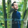 Because of You - Richard Woodford