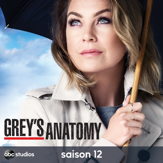greys anatomy saison 12 streaming