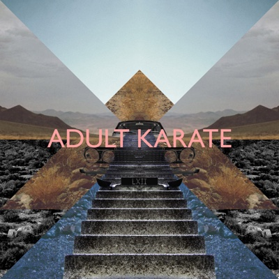 LXII - Adult Karate album