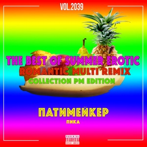 The Best of Summer Erotic Romantic Multi Remix Collection Pm Edition, Vol. 2039