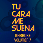 La Media Vuelta (Karaoke Version)