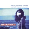 Fake Plastic Trees - Single