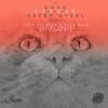 Coyu & Sezer Uysal - Cygnus (Gabriel Ananda Remix) artwork