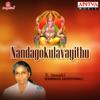 Nandagokulavayithu