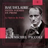Petits poèmes en prose: Le Spleen de Paris