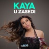 U Zasedi Single