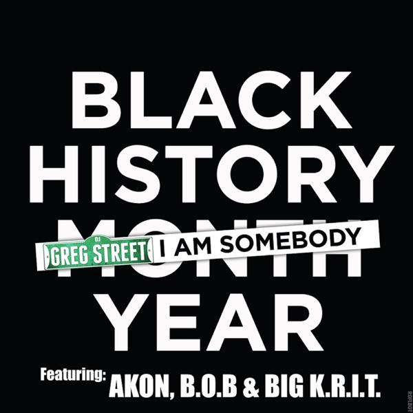I Am Somebody (feat. Akon, B.o.B & Big K.R.I.T.) - Single
