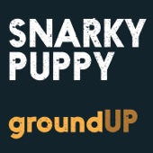 Snarky Puppy - Thing of Gold