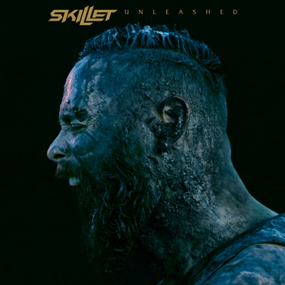 Feel Invincible - Skillet song
